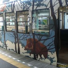 The incredible coloring of trains in Japan